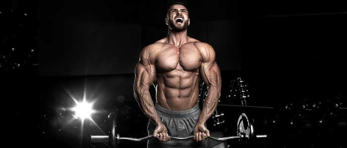 Growth Hormone and its Synthetic Substitutes